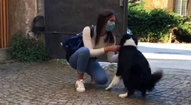 emozione del cane