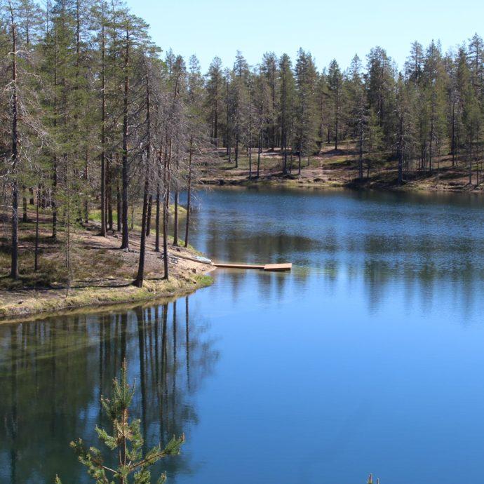 biodiversità- natura- lago