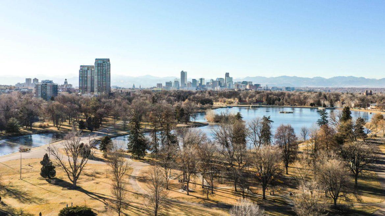 Gli alberi aiutano a ridurre il caldo in città